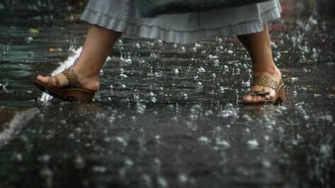 Аномальную жару в Воронеже дополнят грозовые дожди