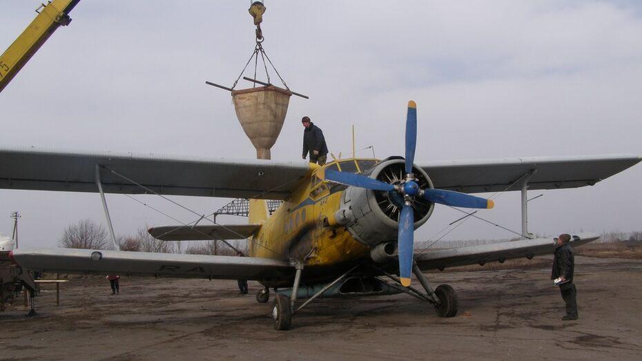 Нижнедевицкие аграрии  подкормят озимые с воздуха