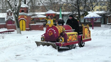 Инженеры проверят аттракционы в Воронежской области перед летними каникулами