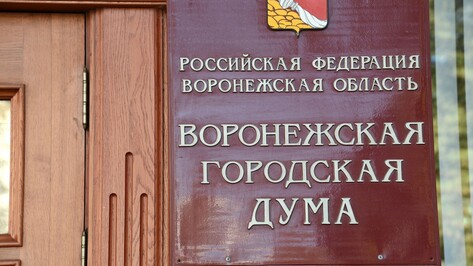 Воронежские депутаты скорректировали бюджет города на 3,2 млрд рублей