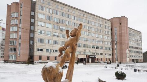 Стал известен график мойки роддомов Воронежской области в 2020 году