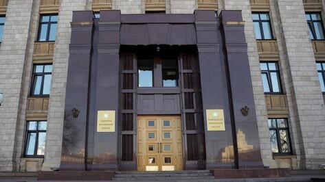Делегация Санкт-Петербурга приедет в Воронеж с культурно-деловой миссией