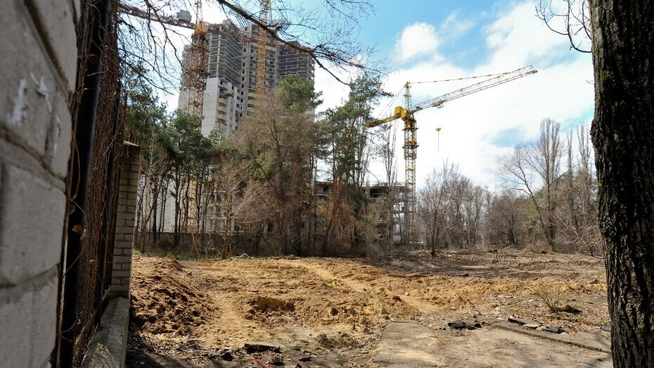 Строительство ледового дворца в Воронеже начнут в 2018 году