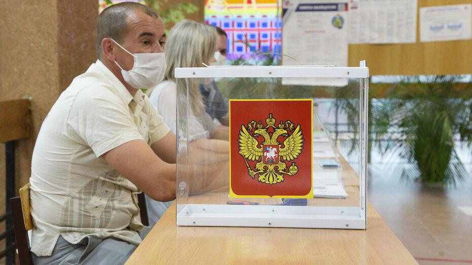 Существенных нарушений в первый день голосования в Воронежской области не выявили