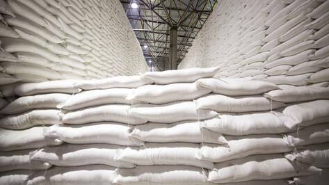 Воронежские аграрии отправили на экспорт продукцию на 383 млн долларов