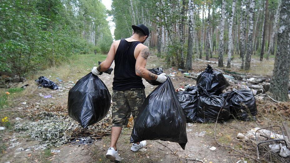 Субботники Всемирного дня чистоты перенесли в Воронежской области из-за плохой погоды