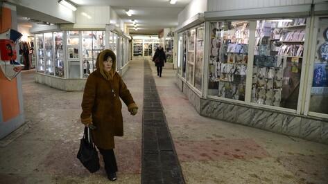 Мэрия Воронежа разработала договор концессии по реконструкции перехода у Цирка