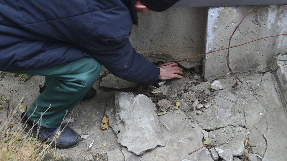 В Воронежской области 7 наркокурьеров получили реальные сроки