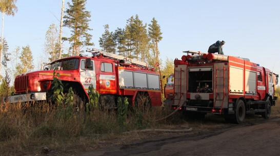 Ландшафтный пожар подобрался к 2 дачным поселкам под Воронежем