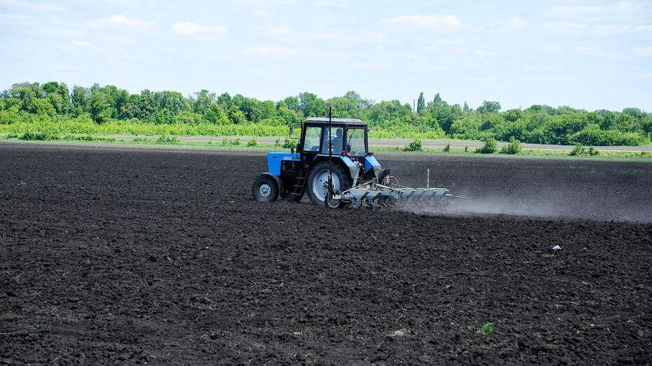 Воронежская область направит на поддержку аграриев 11,4 млрд рублей в 2021 году