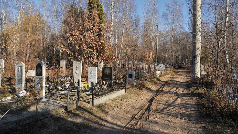 Мэр заявил об исчерпанных возможностях кладбищ Воронежа
