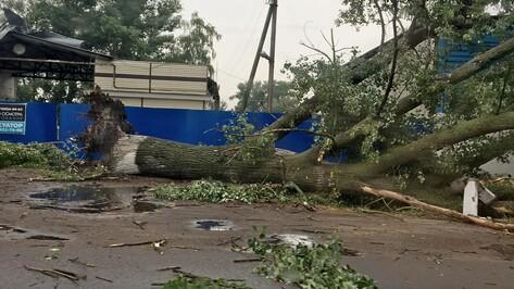 Из-за урагана в Воронежской области пострадал мужчина