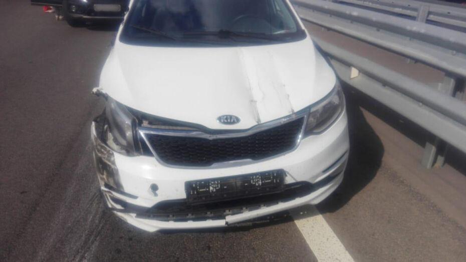 На воронежской трассе иномарка врезалась в ограждение: пострадали 2 ребенка