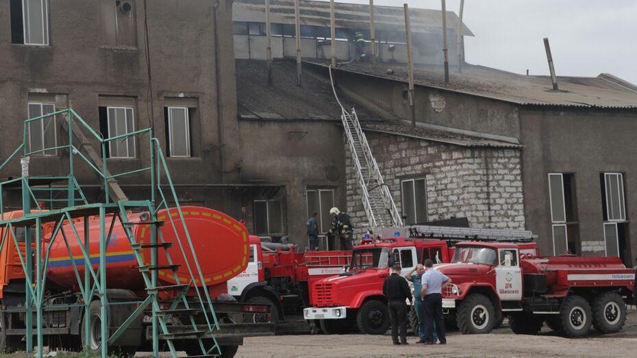 В Воронежской области загорелся завод растительных масел