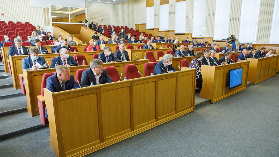 Депутаты Воронежской областной Думы приняли блок социальных законов
