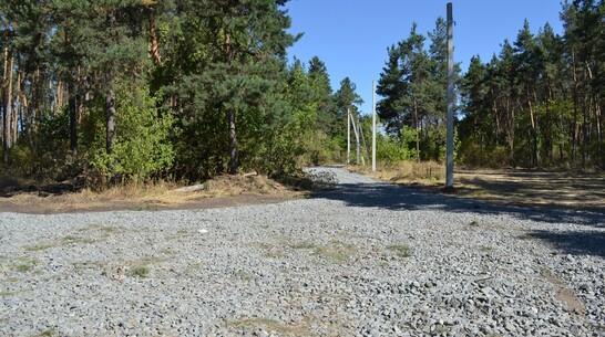 В лесном массиве Лисок появится прогулочная зона за 13 млн рублей