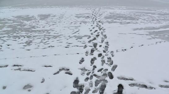 Трое детей провалились под лед в Воронежской области