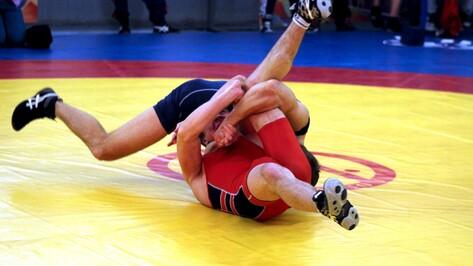 Чемпионат России по вольной борьбе пройдет в Воронеже 2 ноября