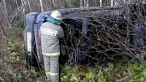 Под Новохоперском «ВАЗ» на полной скорости наехал на упавшее дерево