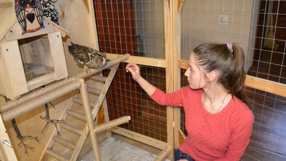 В Лисках семья спасла совенка со сломанным крылом