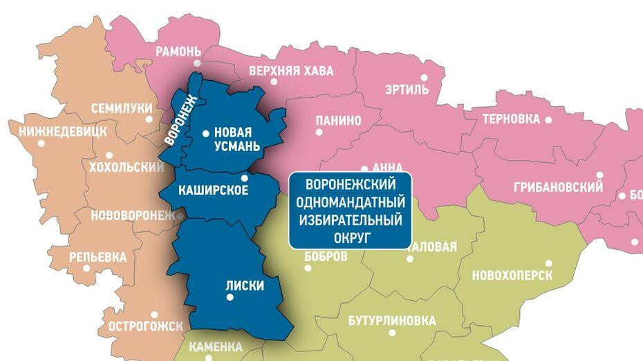 Выборы в Госдуму-2016. Как будут голосовать воронежцы