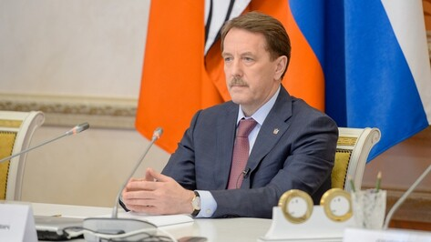 Губернатор Воронежской области за год заработал 10,6 млн рублей