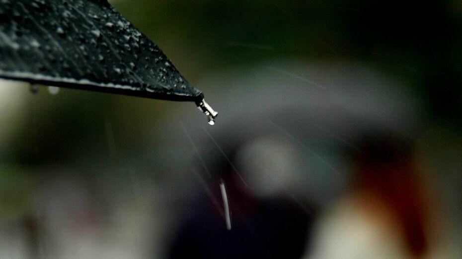 Синоптики предсказали дожди и ночное похолодание в Воронеже в первые выходные апреля