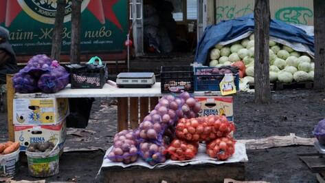 Воронежцы закупят овощи и фрукты от производителей