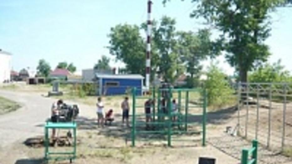 В Воронеже к августу появятся около 50 спортивно-гимнастических площадок