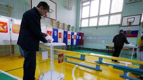 Избирательные участки в Воронежской области закрылись с явкой в 46,95%