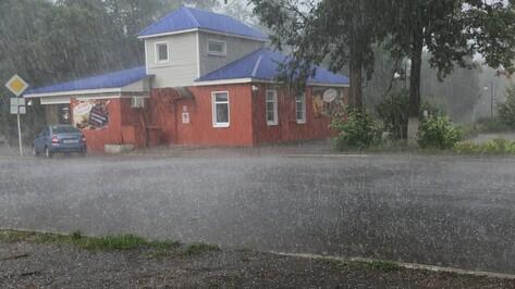 Ураган в Бобровском районе повалил деревья и оставил без света жителей