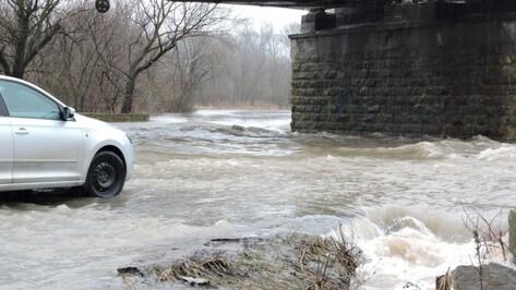 Жителей Воронежской области призвали застраховать имущество от паводка