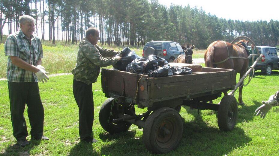 Лошадь Росинка помогла в уборке озерных берегов в верхнемамонском селе