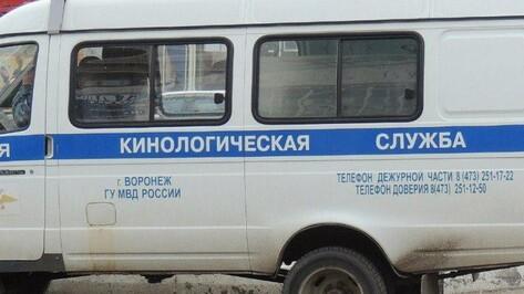 В Воронеже 300 человек эвакуировали после сообщения о бомбе в ДК «Шинник»