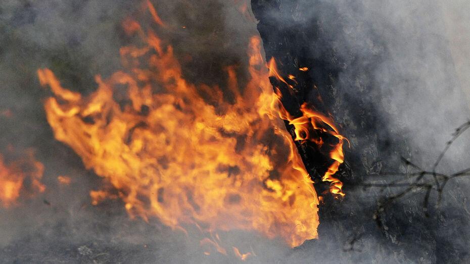 Из-за пожара сотрудников санатория в Воронежской области эвакуировали по реке
