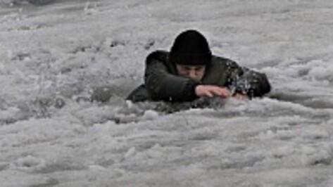 Рамонских рыбаков попросили не выходить на тонкий лед