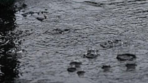 Под Воронежем неизвестный водитель сбил насмерть мужчину и скрылся