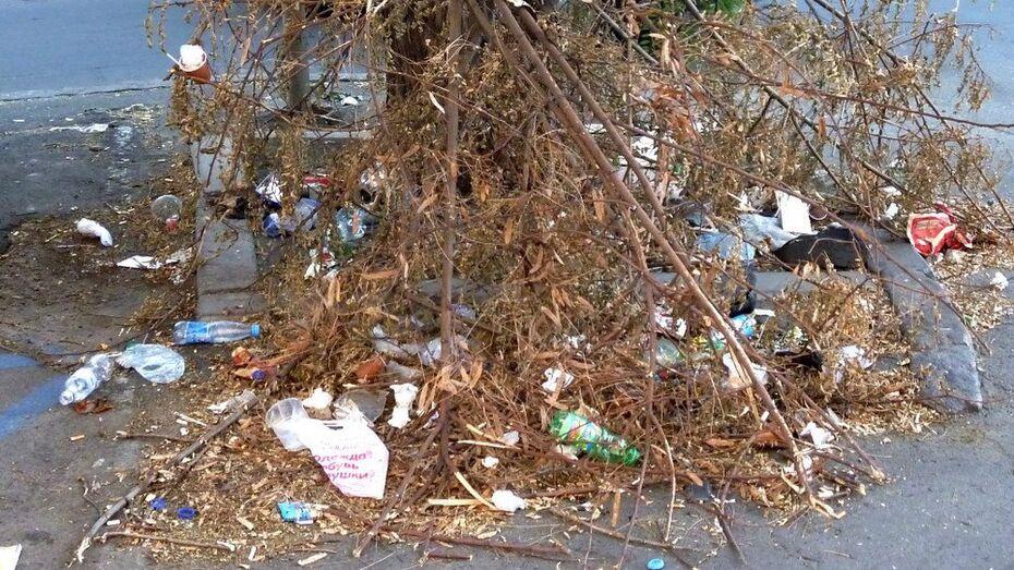 Воронежские студенты очистят от мусора левый берег водохранилища