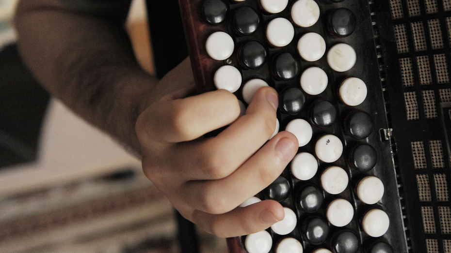 Школы искусств Воронежской области получат новые музыкальные инструменты