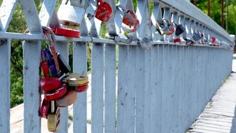 В Воронеже запланировали создать Аллею молодоженов возле парка «Танаис»