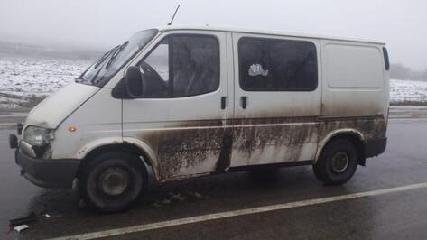 В массовом ДТП с микроавтобусом в Воронежской области пострадали старик и годовалый ребенок