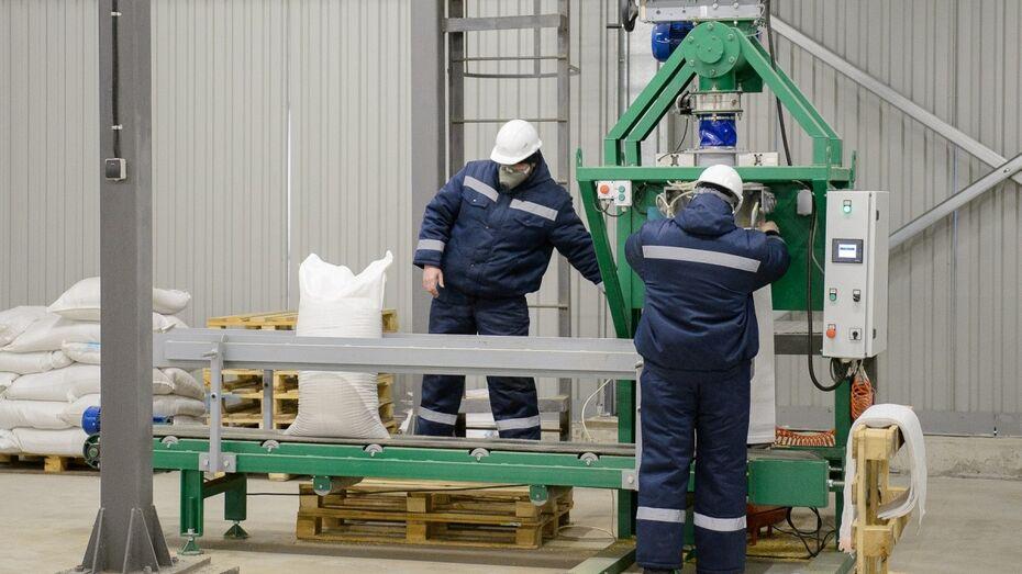 Новый комбикормовый завод под Воронежем запустят в 2017 году