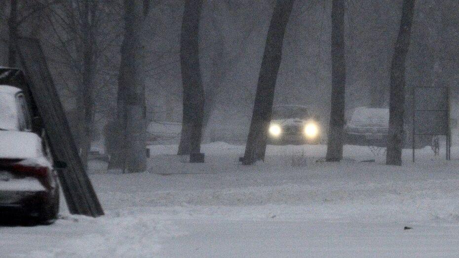 Воронежские спасатели предупредили о сильном ветре