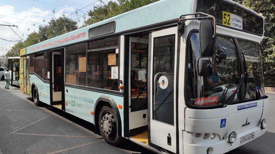 Мэрия спросила воронежцев, готовы ли они сменить личное авто на общественный транспорт