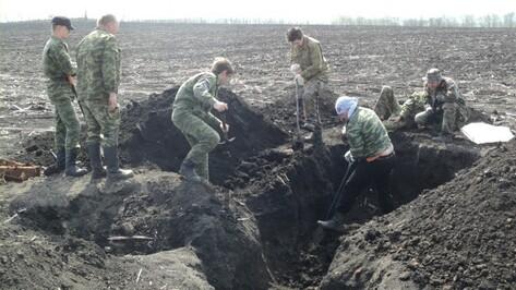 Воронежский краеведческий музей начал поиск подрядчика для раскопок в Дубовке
