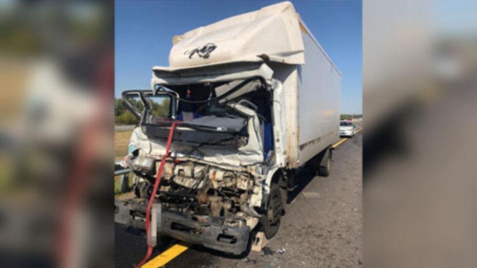 В Воронежской области столкнулись 2 грузовика: 2 мужчин госпитализировали