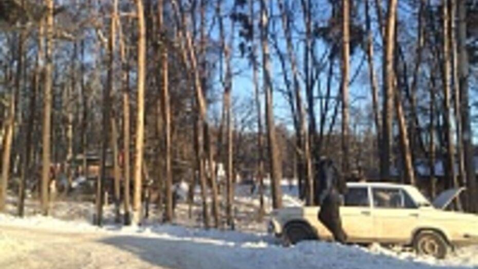 Вчера на скользких дорогах Воронежской области произошло 193 аварии