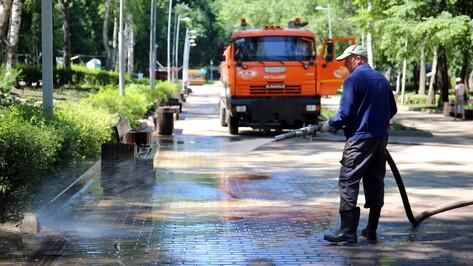 Центральный парк в Воронеже привели в порядок после потопа