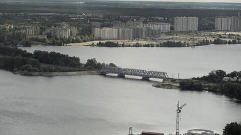 В Воронежское водохранилище запустят 600 тыс мальков