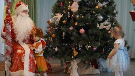 Воронежские елки пройдут без бенгальских огней